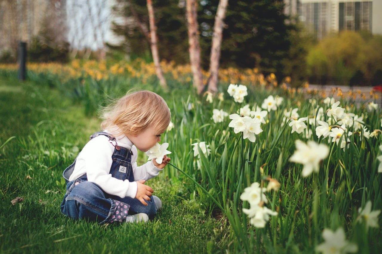 Natural Skincare for Spring - child smelling daffodil